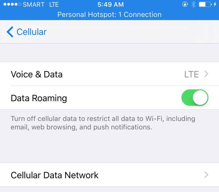 How to activate SMART Data Roaming this 2016