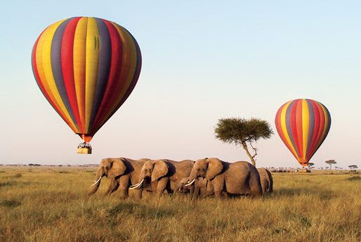 Wildlife safari on a hot air balloon