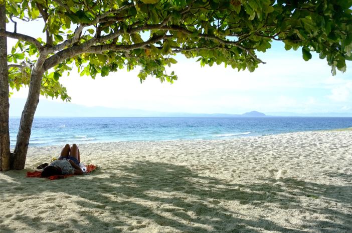 Under the tree Cuatros Islas in Leyte Stunning Photo